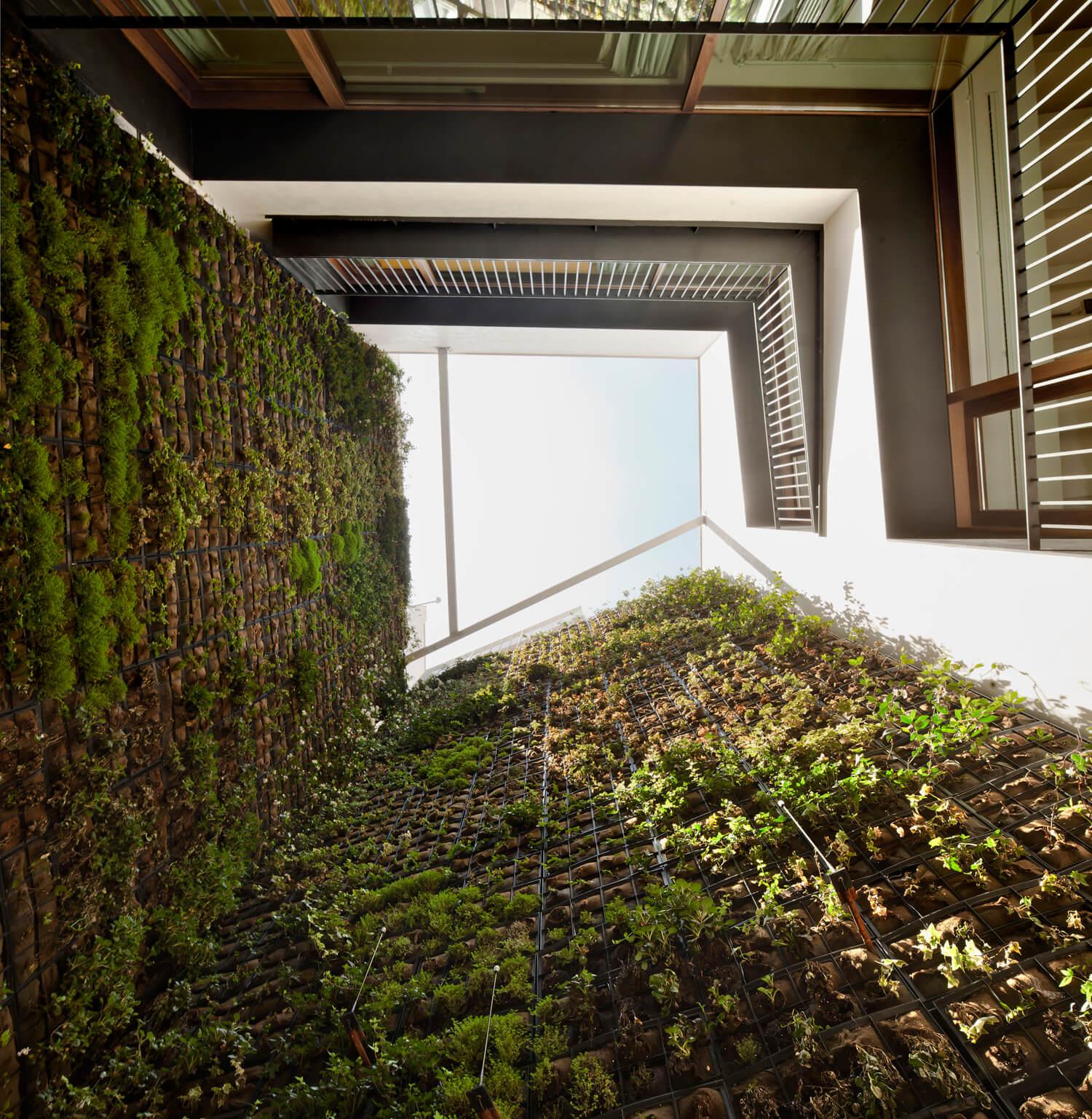 planell-hirsch_arquitectura_rehabilitacion_interiorismo_barcelona_born_mirallers_patio-verde_adriagoula_3002+03